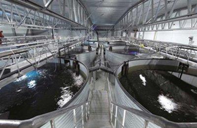 aquaculture-front